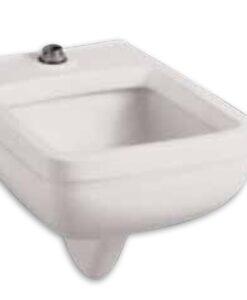 American Standard 3043 001 020 Ada Floormount Toilet Cat